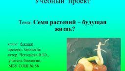 გადავთარგმნი 2 გვერდს ბიოლოგიურ ტექსტს რუსულიდან ქართულად