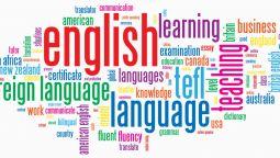 შეგასწავლით ინგლისურს, დისტანციურად - სკაიპით