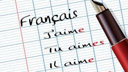 დაგეხმაეწბით ფრანგული ენის საშინაო დავალების მომზადებაში