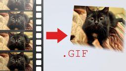 გავაკეთებ 5 ცალ GIF ანიმაციას ვიდეოდან